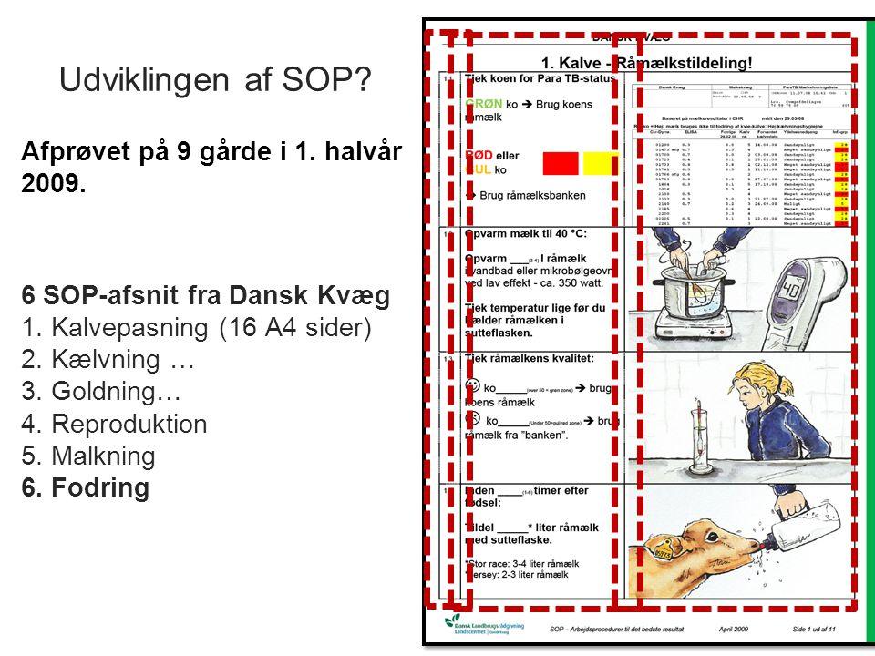 Udviklingen af SOP. 6 SOP-afsnit fra Dansk Kvæg 1.
