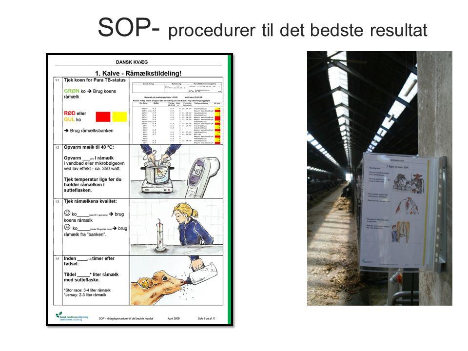 SOP- procedurer til det bedste resultat