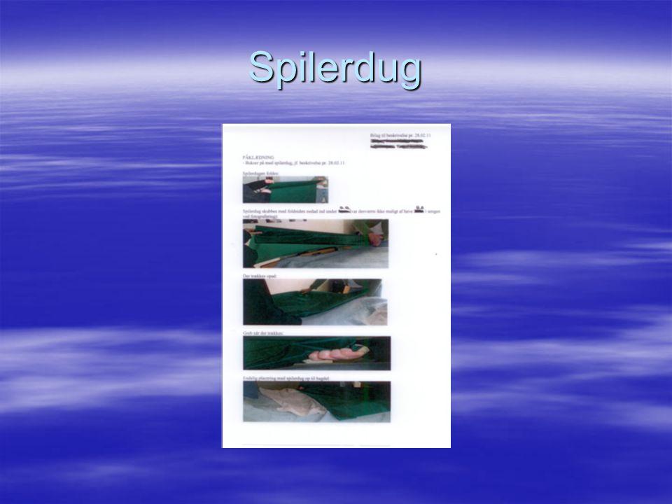 Spilerdug