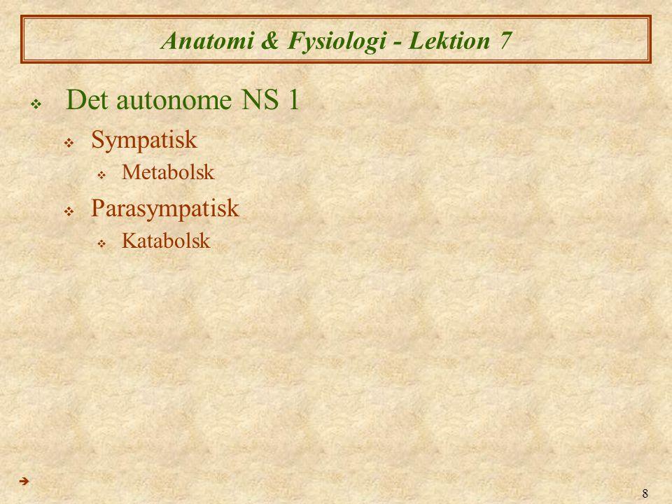 9 Anatomi & Fysiologi - Lektion 7  Det autonome NS 2  Motorisk  Glatte muskulatur  Indre organer  Blodkar og kapillær netværket  Hjertemuskel (myokardiet)  Sensorisk  Autonom sensoriske input deles med det somatiske nervesystemet; dvs.