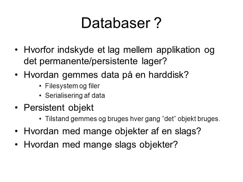 Databaser . Hvorfor indskyde et lag mellem applikation og det permanente/persistente lager.