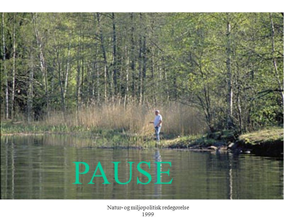 Natur- og miljøpolitisk redegørelse 1999 PAUSE