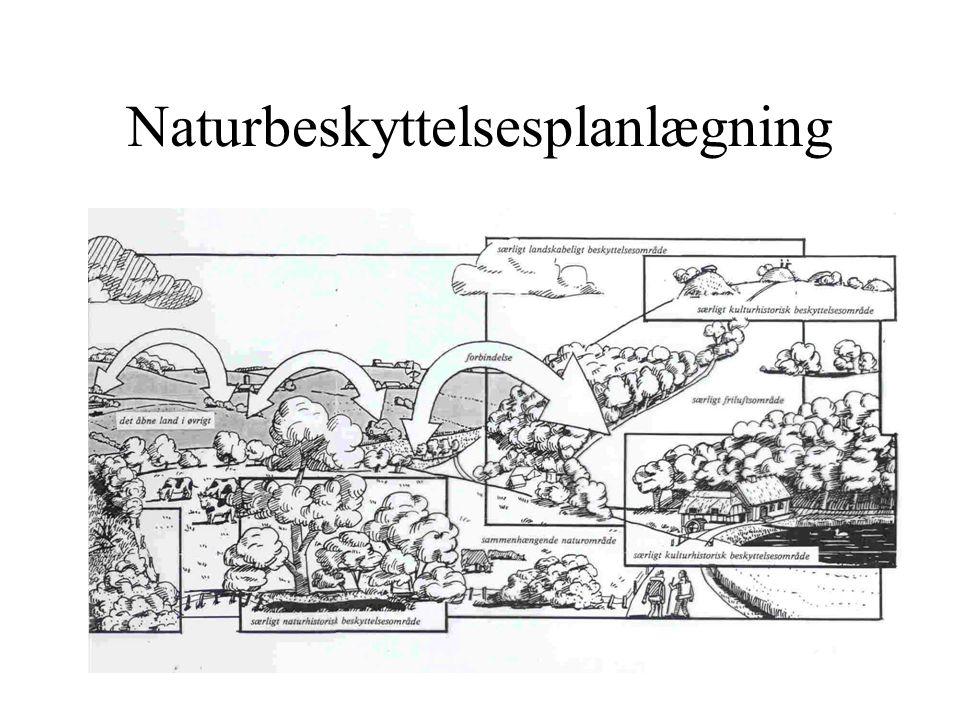 Naturbeskyttelsesplanlægning