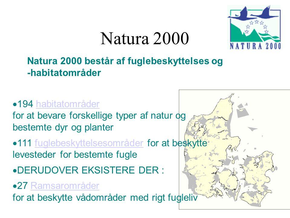 Natura 2000 Natura 2000 består af fuglebeskyttelses og -habitatområder  194 habitatområder for at bevare forskellige typer af natur og bestemte dyr og planterhabitatområder  111 fuglebeskyttelsesområder for at beskytte levesteder for bestemte fuglefuglebeskyttelsesområder  DERUDOVER EKSISTERE DER :  27 Ramsarområder for at beskytte vådområder med rigt fuglelivRamsarområder