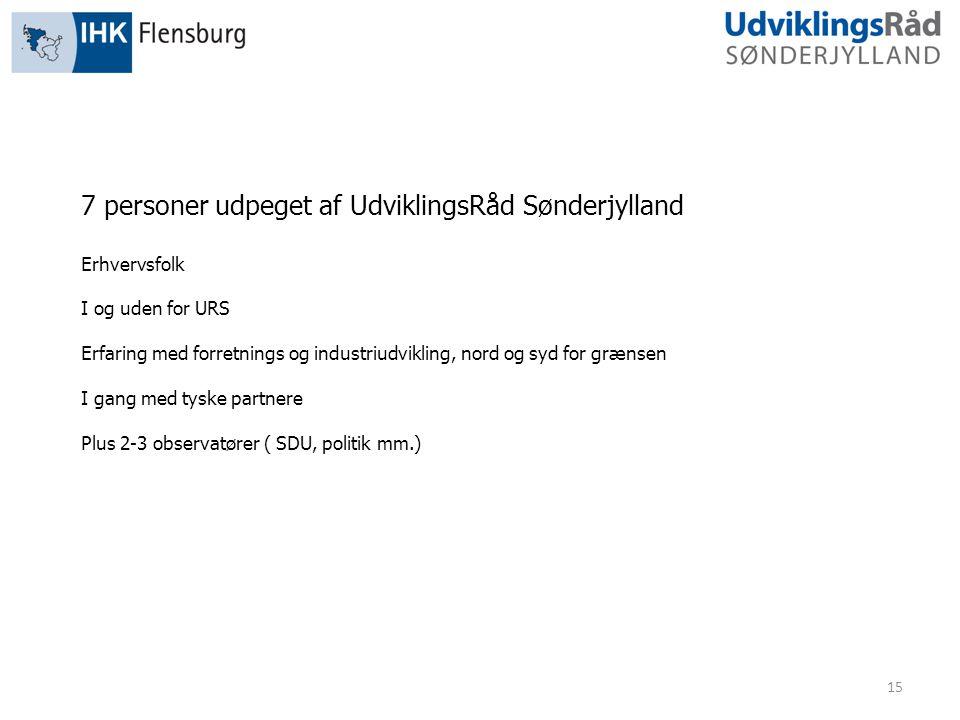 15 7 personer udpeget af UdviklingsRåd Sønderjylland Erhvervsfolk I og uden for URS Erfaring med forretnings og industriudvikling, nord og syd for grænsen I gang med tyske partnere Plus 2-3 observatører ( SDU, politik mm.)