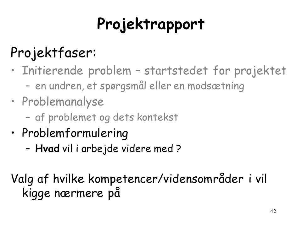 42 Projektrapport Projektfaser: Initierende problem – startstedet for projektet –en undren, et spørgsmål eller en modsætning Problemanalyse –af problemet og dets kontekst Problemformulering –Hvad vil i arbejde videre med .