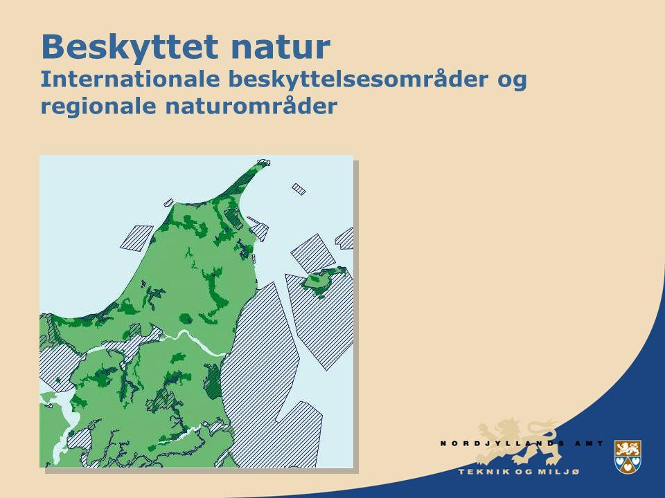 Beskyttet natur Internationale beskyttelsesområder og regionale naturområder