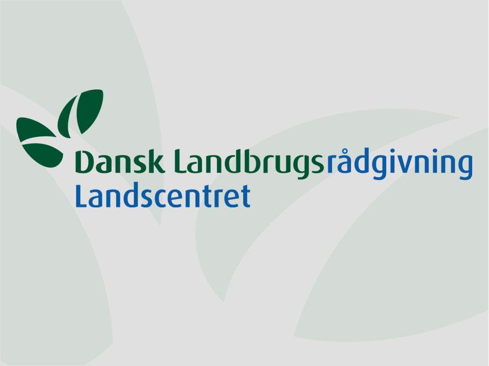 Dansk Landbrugsrådgivning Landscentret | Planteavl Konklusion - fortsat Fosfortabet fra dansk landbrug er generelt lavt Evt.