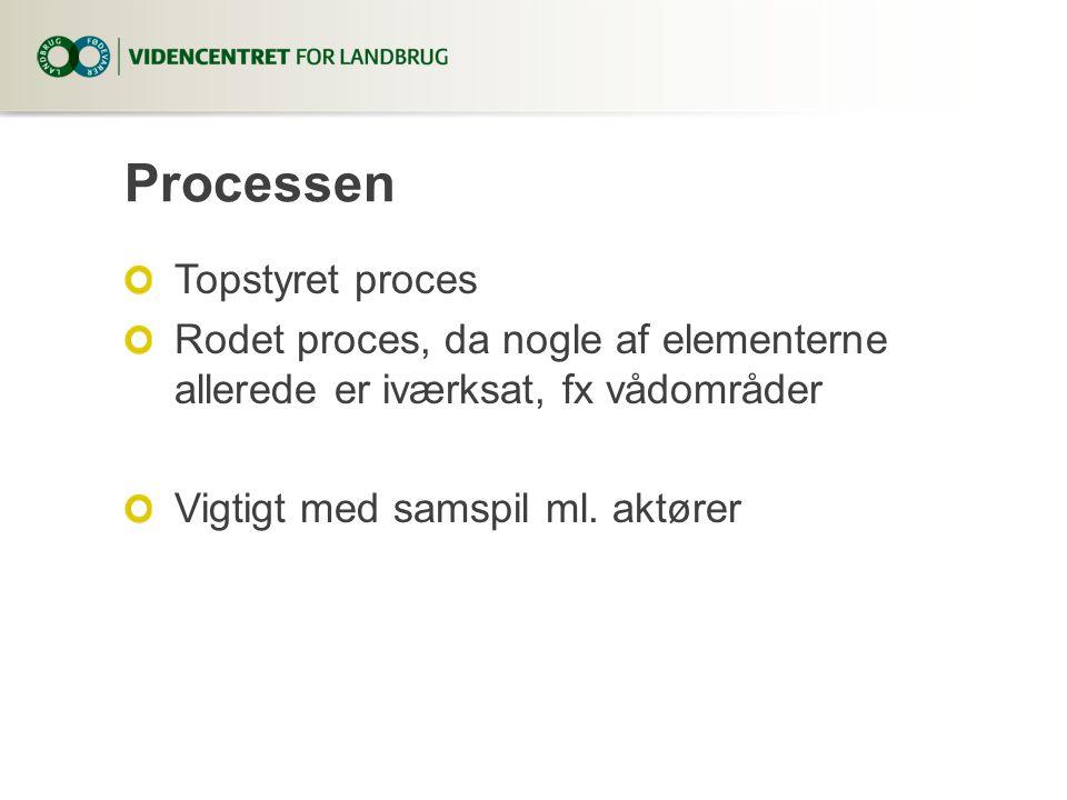 Processen Topstyret proces Rodet proces, da nogle af elementerne allerede er iværksat, fx vådområder Vigtigt med samspil ml.