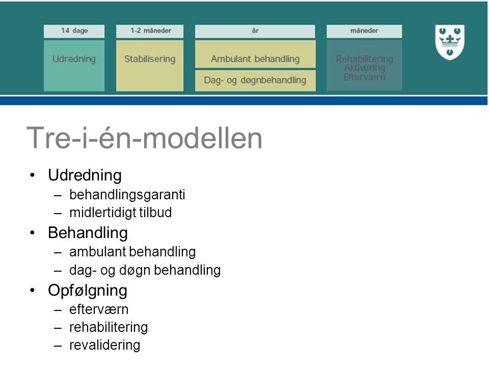 Tre-i-én-modellen Udredning –behandlingsgaranti –midlertidigt tilbud Behandling –ambulant behandling –dag- og døgn behandling Opfølgning –efterværn –rehabilitering –revalidering