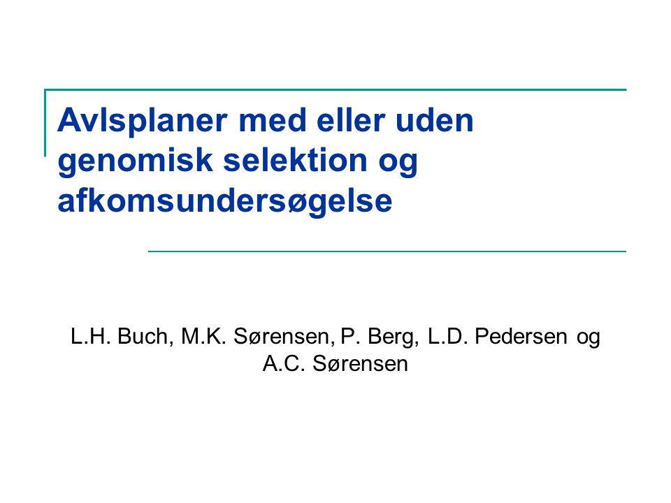 Avlsplaner med eller uden genomisk selektion og afkomsundersøgelse L.H.
