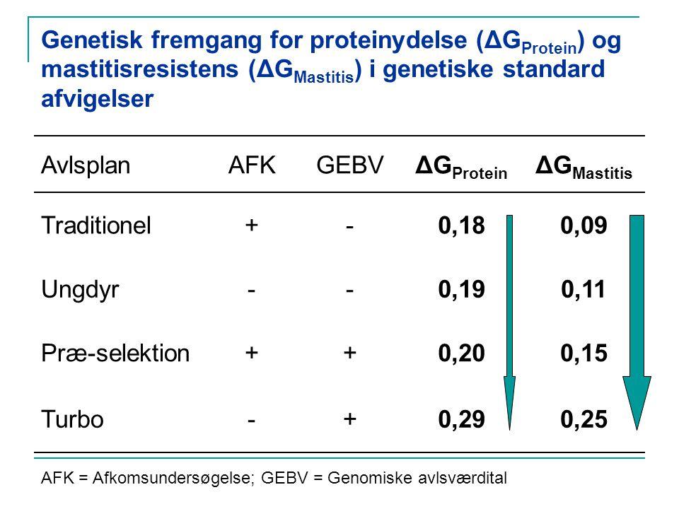 Genetisk fremgang for proteinydelse (ΔG Protein ) og mastitisresistens (ΔG Mastitis ) i genetiske standard afvigelser AvlsplanAFKGEBVΔG Protein ΔG Mastitis Traditionel+-0,180,09 Ungdyr--0,190,11 Præ-selektion++0,200,15 Turbo-+0,290,25 AFK = Afkomsundersøgelse; GEBV = Genomiske avlsværdital