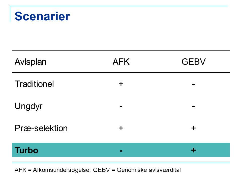 Scenarier AvlsplanAFKGEBV Traditionel+- Ungdyr-- Præ-selektion++ Turbo-+ AFK = Afkomsundersøgelse; GEBV = Genomiske avlsværdital