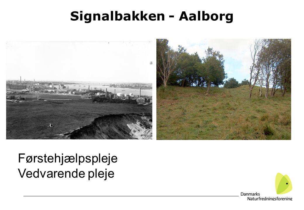 Signalbakken - Aalborg Førstehjælpspleje Vedvarende pleje