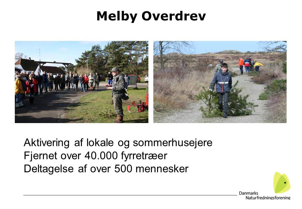 Melby Overdrev Aktivering af lokale og sommerhusejere Fjernet over 40.000 fyrretræer Deltagelse af over 500 mennesker
