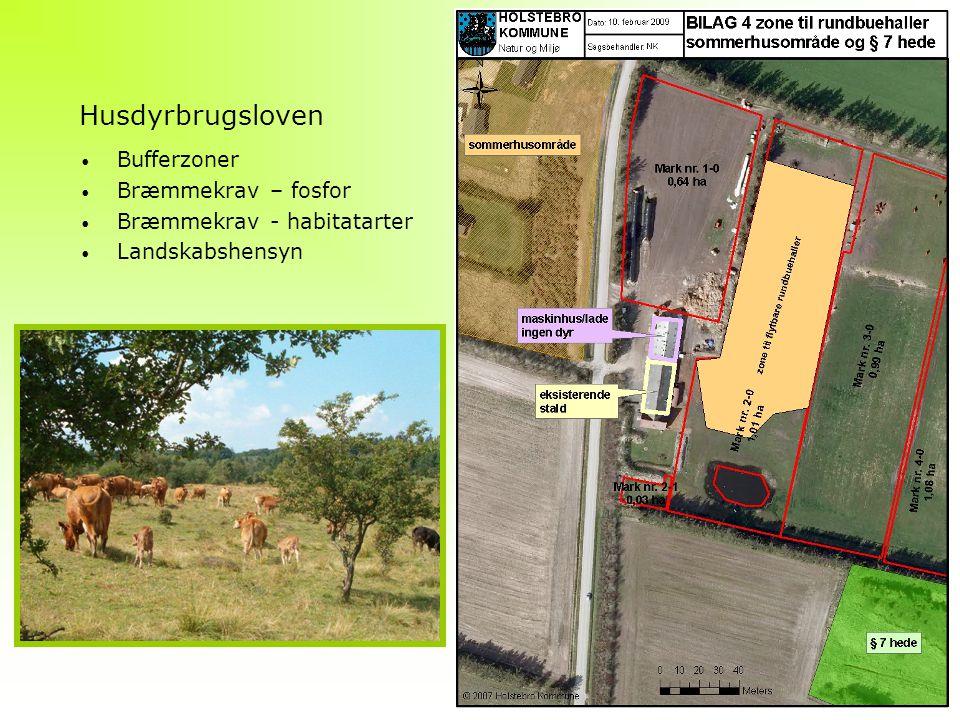 10 Husdyrbrugsloven Bufferzoner Bræmmekrav – fosfor Bræmmekrav - habitatarter Landskabshensyn