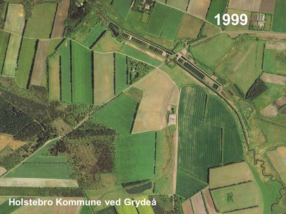12 1999 Holstebro Kommune ved Grydeå