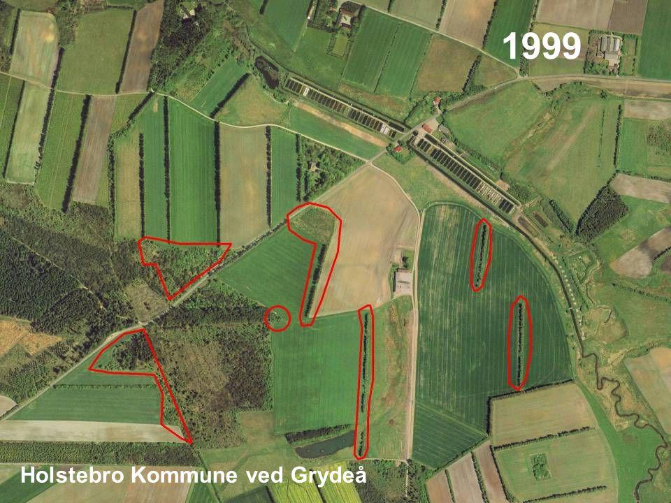 13 1999 Holstebro Kommune ved Grydeå