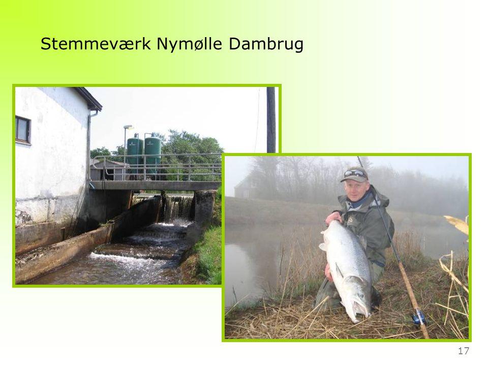 17 Stemmeværk Nymølle Dambrug