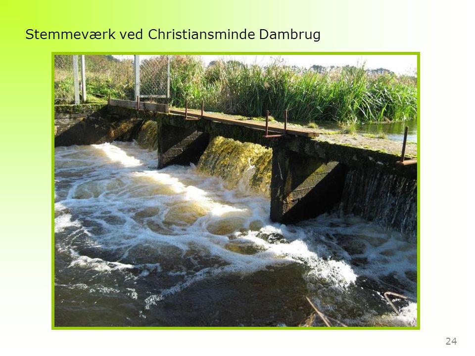 24 Stemmeværk ved Christiansminde Dambrug