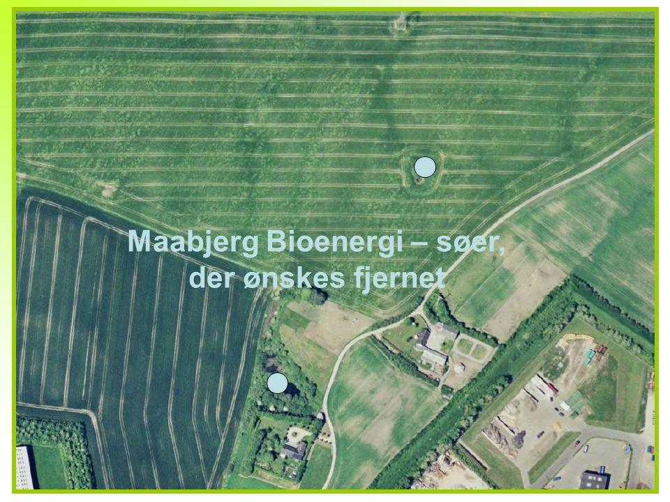 8 Maabjerg Bioenergi – søer, der ønskes fjernet