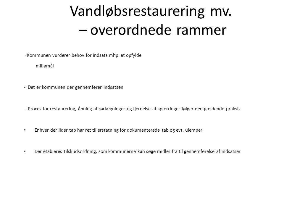 Vandløbsrestaurering mv. – overordnede rammer - Kommunen vurderer behov for indsats mhp.