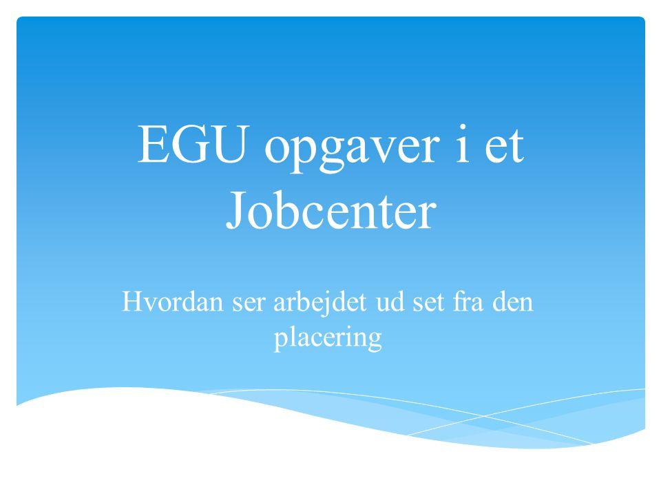 EGU opgaver i et Jobcenter Hvordan ser arbejdet ud set fra den placering