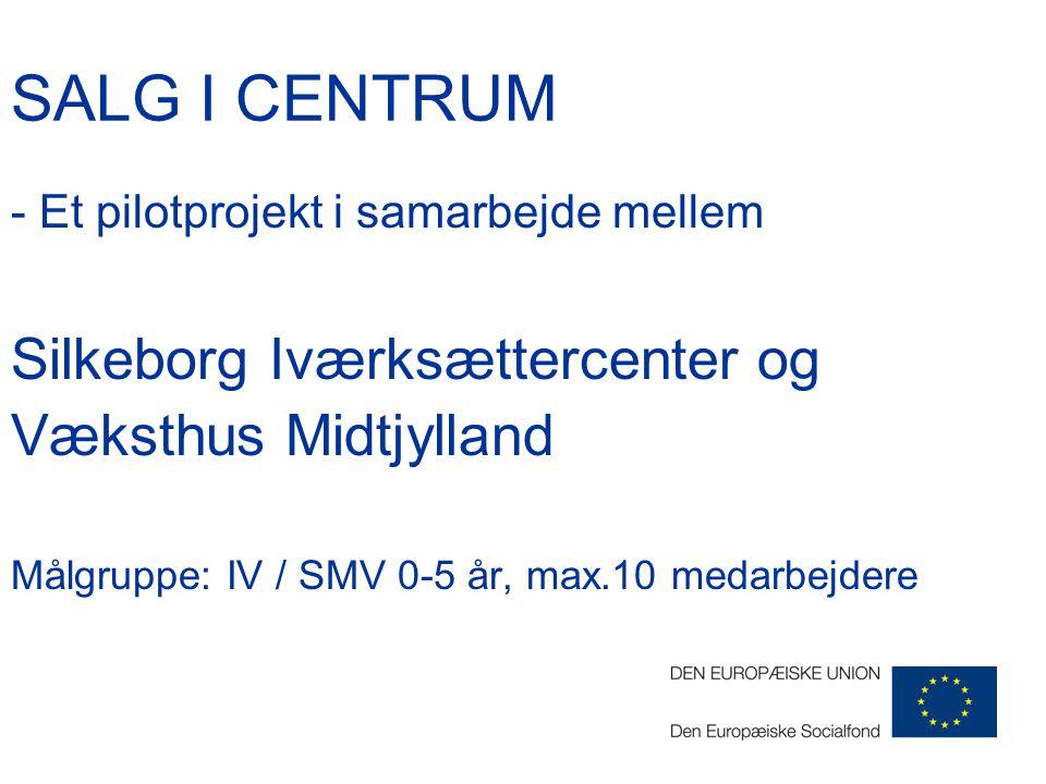 SALG I CENTRUM - Et pilotprojekt i samarbejde mellem Silkeborg Iværksættercenter og Væksthus Midtjylland Målgruppe: IV / SMV 0-5 år, max.10 medarbejdere