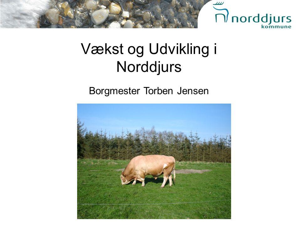Vækst og Udvikling i Norddjurs Borgmester Torben Jensen