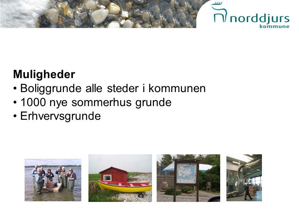 Muligheder Boliggrunde alle steder i kommunen 1000 nye sommerhus grunde Erhvervsgrunde