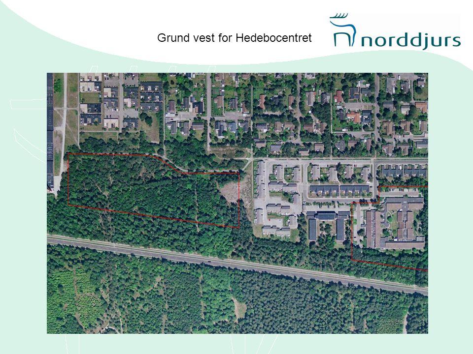 Grund vest for Hedebocentret