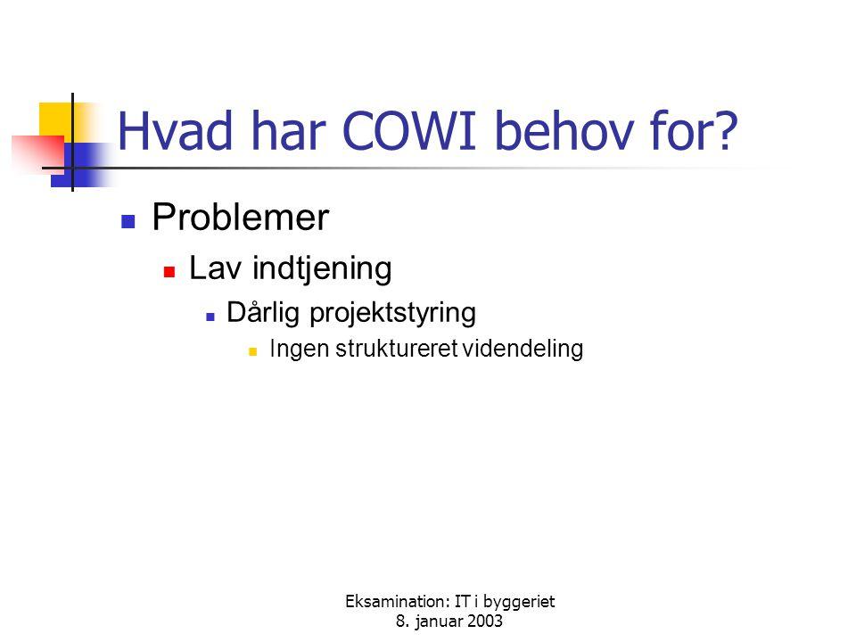 Eksamination: IT i byggeriet 8. januar 2003 Hvad har COWI behov for.