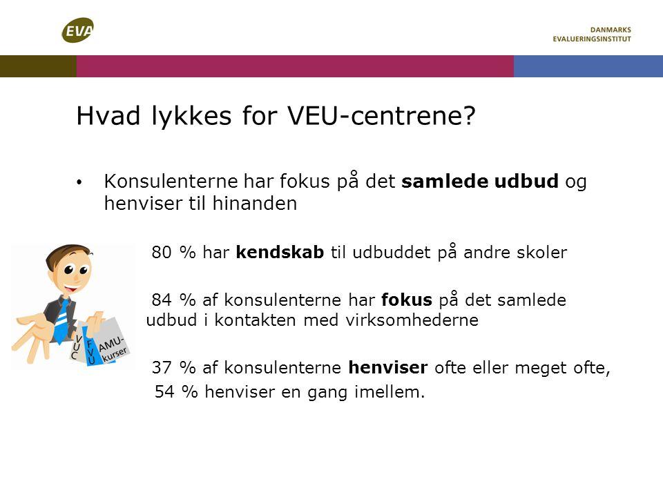 Hvad lykkes for VEU-centrene.