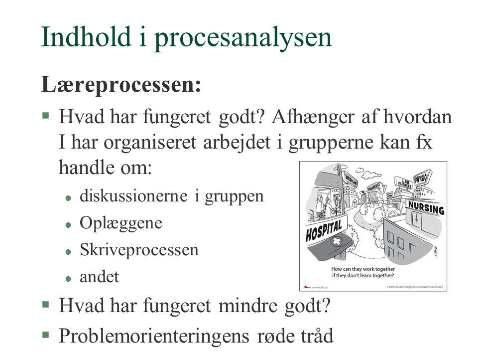 Indhold i procesanalysen Læreprocessen: §Hvad har fungeret godt.