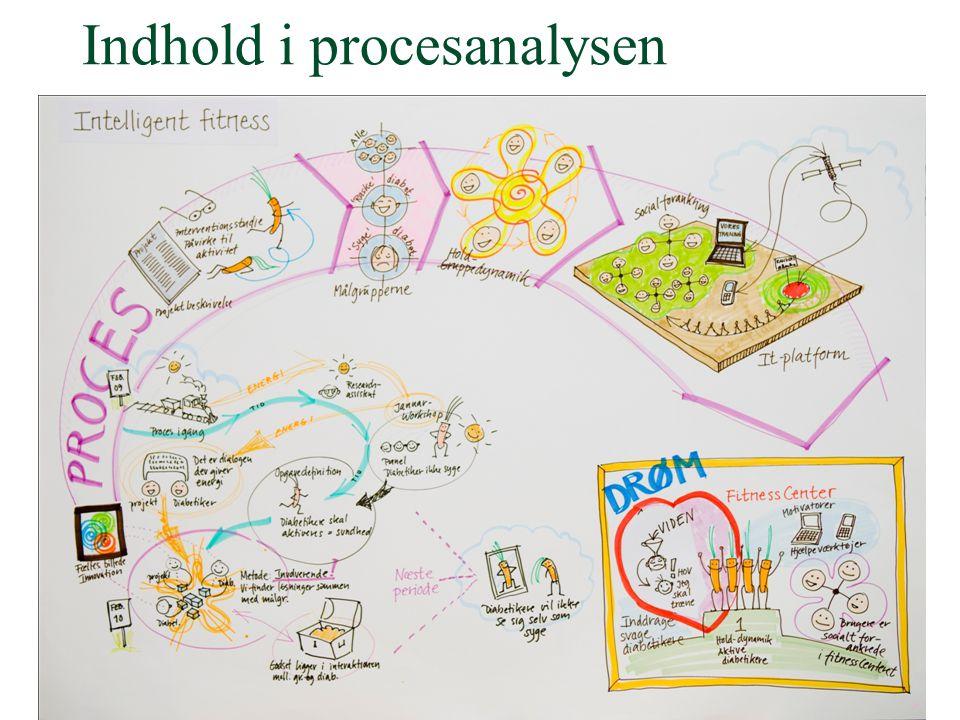 Indhold i procesanalysen