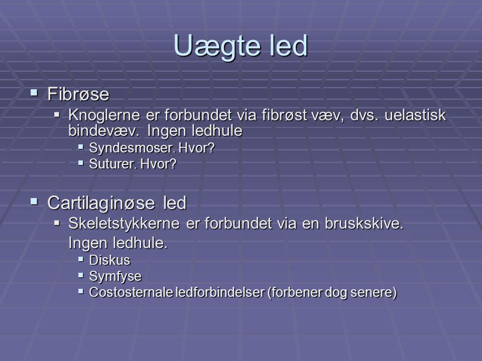 Uægte led  Fibrøse  Knoglerne er forbundet via fibrøst væv, dvs.