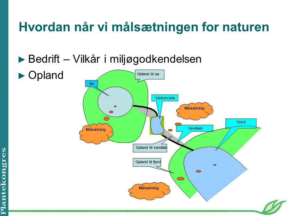 Hvordan når vi målsætningen for naturen ► Bedrift – Vilkår i miljøgodkendelsen ► Opland Sø Opland til sø Vandløbl Fjord Opland til vandløb Opland til fjord Målsætning Vådområde