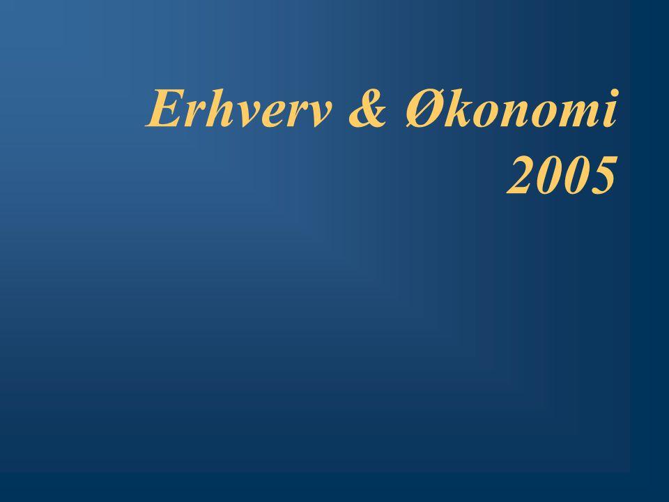 Erhverv & Økonomi 2005