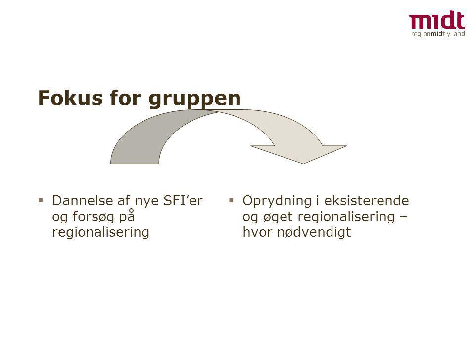 Fokus for gruppen  Dannelse af nye SFI'er og forsøg på regionalisering  Oprydning i eksisterende og øget regionalisering – hvor nødvendigt