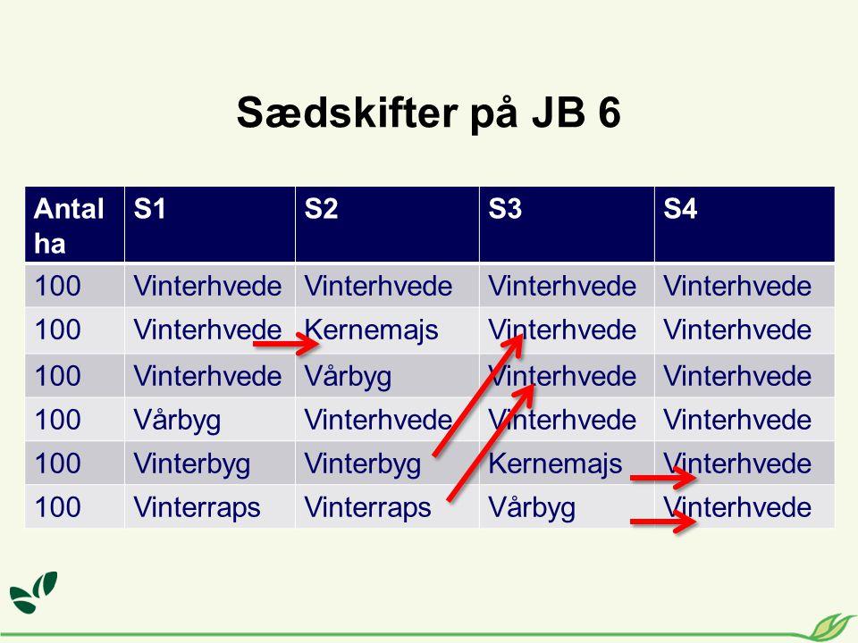 Antal ha S1S2S3S4 100Vinterhvede 100VinterhvedeKernemajsVinterhvede 100VinterhvedeVårbygVinterhvede 100VårbygVinterhvede 100Vinterbyg KernemajsVinterhvede 100Vinterraps VårbygVinterhvede Sædskifter på JB 6