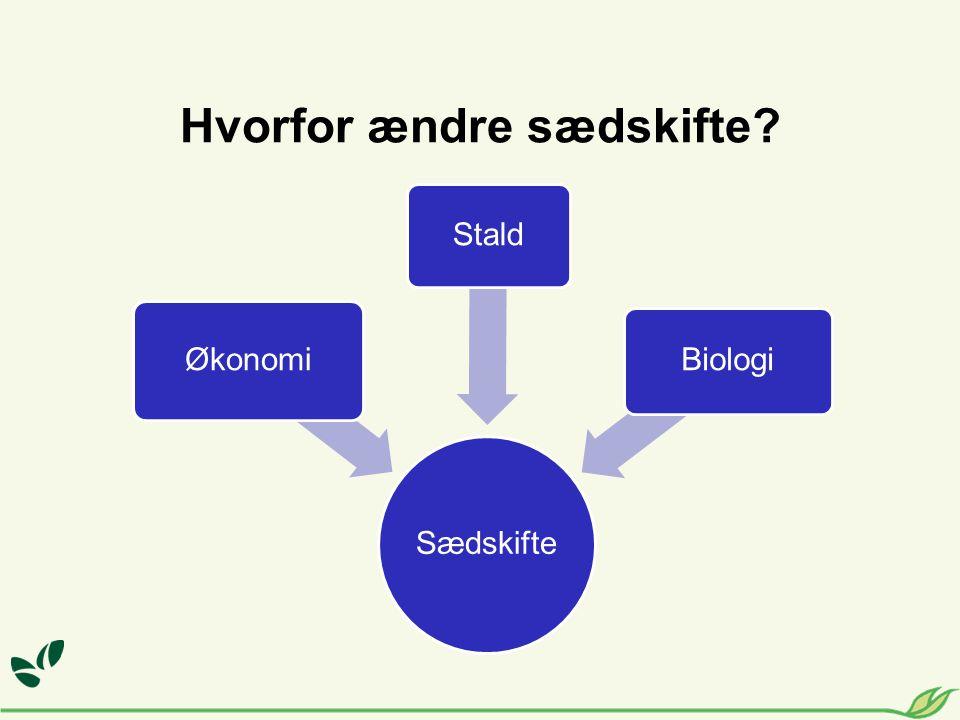 Hvorfor ændre sædskifte Sædskifte Økonomi Stald Biologi