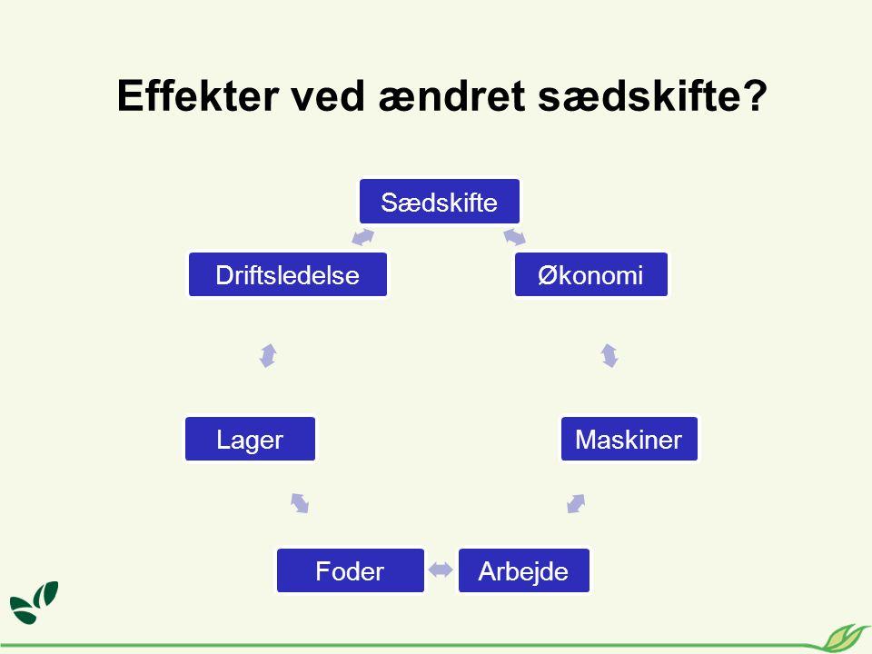 Effekter ved ændret sædskifte Sædskifte Økonomi Maskiner Arbejde Foder Lager Driftsledelse