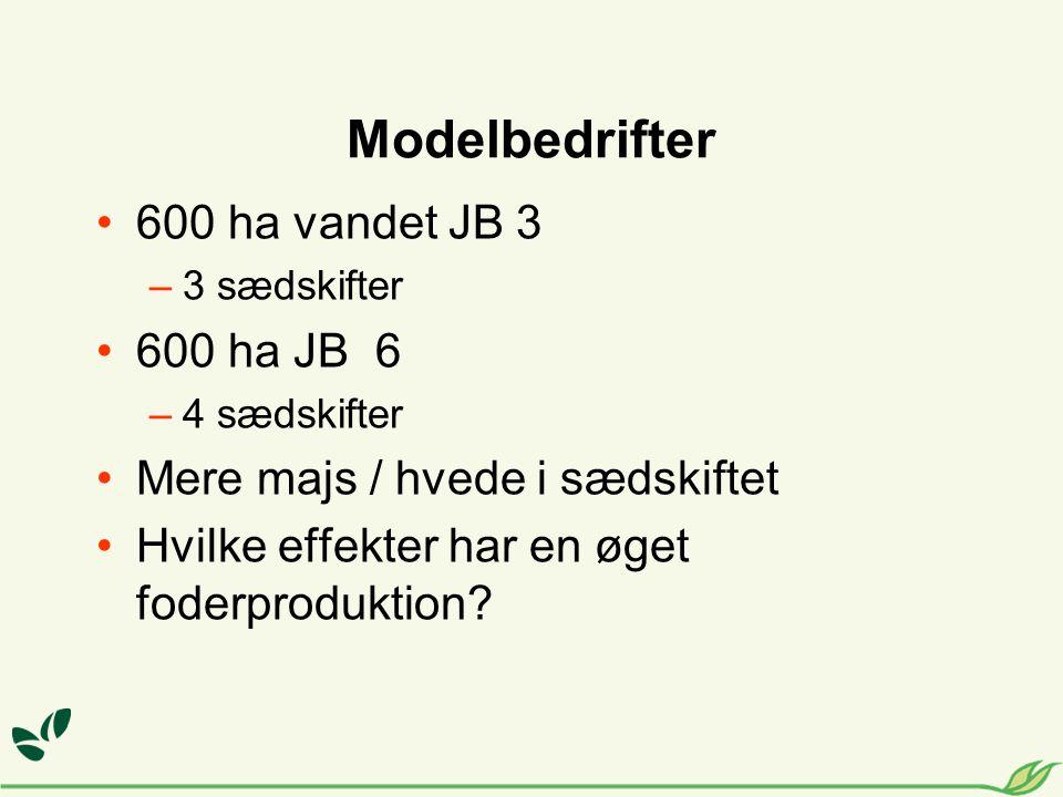 Modelbedrifter 600 ha vandet JB 3 –3 sædskifter 600 ha JB 6 –4 sædskifter Mere majs / hvede i sædskiftet Hvilke effekter har en øget foderproduktion
