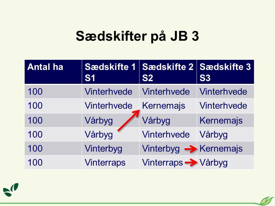 Antal haSædskifte 1 S1 Sædskifte 2 S2 Sædskifte 3 S3 100Vinterhvede 100VinterhvedeKernemajsVinterhvede 100Vårbyg Kernemajs 100VårbygVinterhvedeVårbyg 100Vinterbyg Kernemajs 100Vinterraps Vårbyg Sædskifter på JB 3