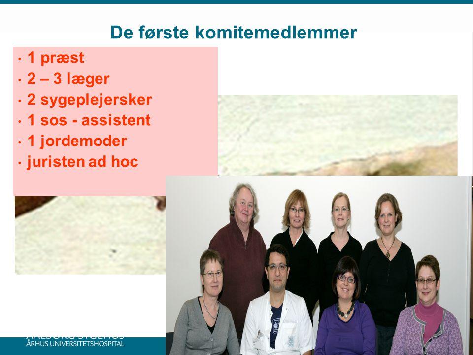 De første komitemedlemmer 1 præst 2 – 3 læger 2 sygeplejersker 1 sos - assistent 1 jordemoder juristen ad hoc