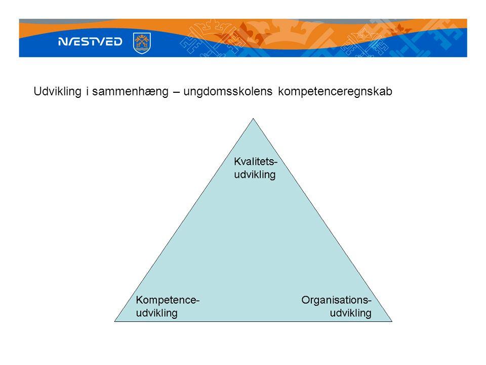 Udvikling i sammenhæng – ungdomsskolens kompetenceregnskab