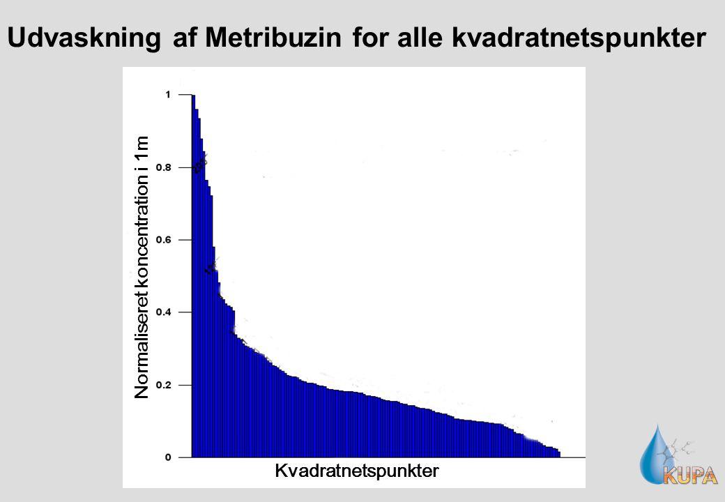 Udvaskning af Metribuzin for alle kvadratnetspunkter Kvadratnetspunkter Normaliseret koncentration i 1m