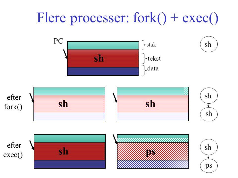 Flere processer: fork() + exec() stak tekst data sh ps efter fork() efter exec() sh ps PC
