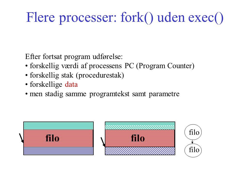 Flere processer: fork() uden exec() Efter fortsat program udførelse: forskellig værdi af processens PC (Program Counter) forskellig stak (procedurestak) forskellige data men stadig samme programtekst samt parametre filo