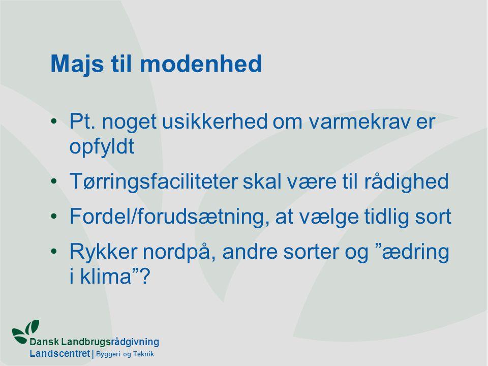 Dansk Landbrugsrådgivning Landscentret   Byggeri og Teknik Majs til modenhed Pt.